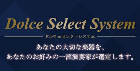 dolceselectsystem